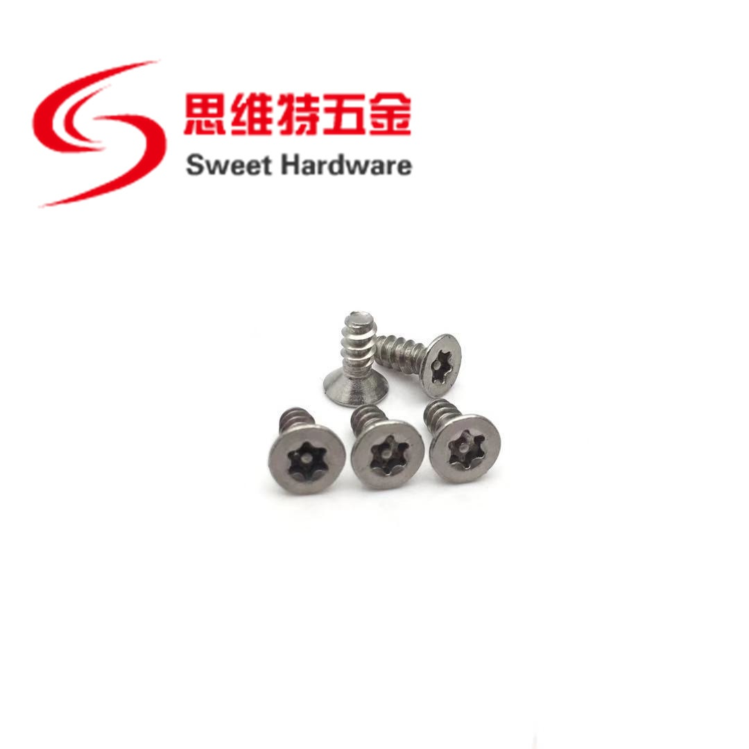 304 A2 stainless steel countersunk head torx pin screw hex tapping security screw T20 T25