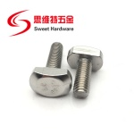 High quality inox 304 stainless steel T bolt